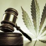 En octubre, ley para uso lúdico del cannabis