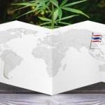 Presentan la primera plantación legal de marihuana en Tailandia