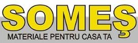 logo-SOMES-info849