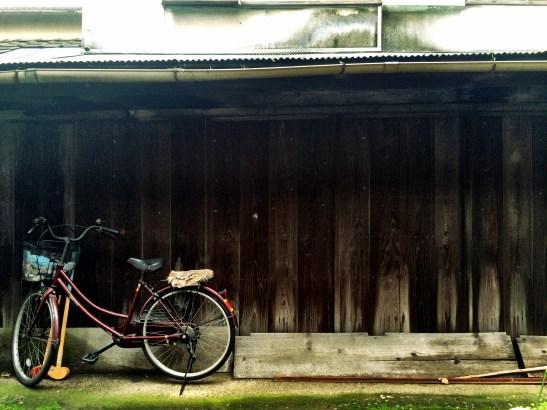 Biking is big here, we soon learn.