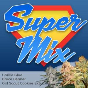 Super Seller Cannabis Seed Mixpack