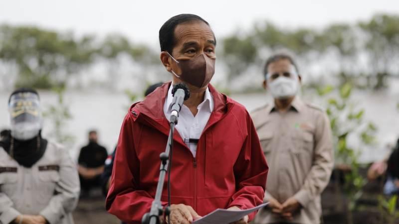 Presiden RI Joko Widodo: Rehabilitasi Mangrove Akan Terus Kita Lakukan