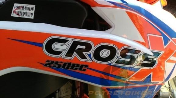 Viar Cross X 250 EC (18)