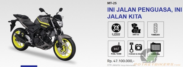 New Color Yamaha MT25
