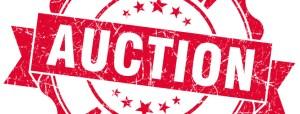 auction-845x321