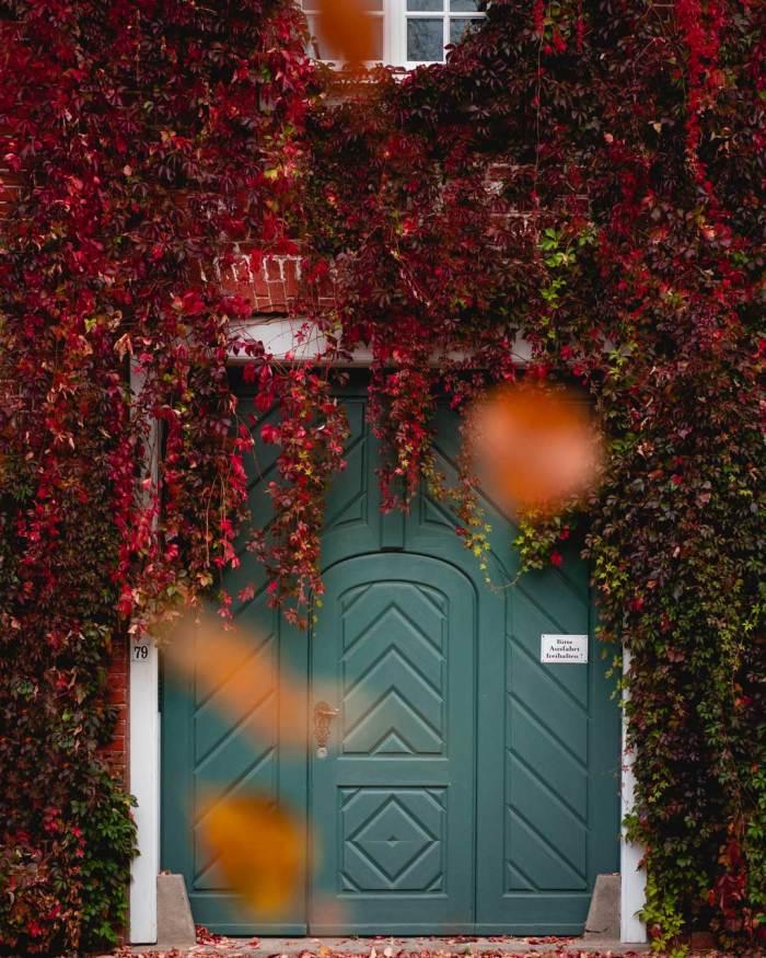 Herbstlaub fällt vor einer schönen Tür im Holländischen Viertel
