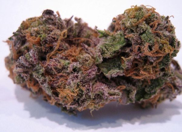 Buy Granddaddy Purple