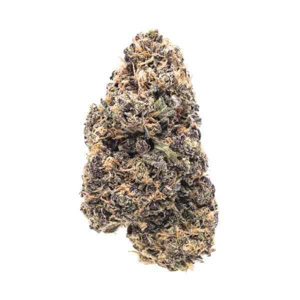 Purple Haze for sale