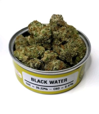 Space Monkey Meds Black Water OG