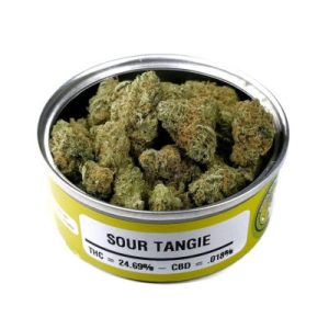 Space Monkey Meds Sour Tangie