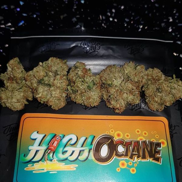 Jungle boys High octane