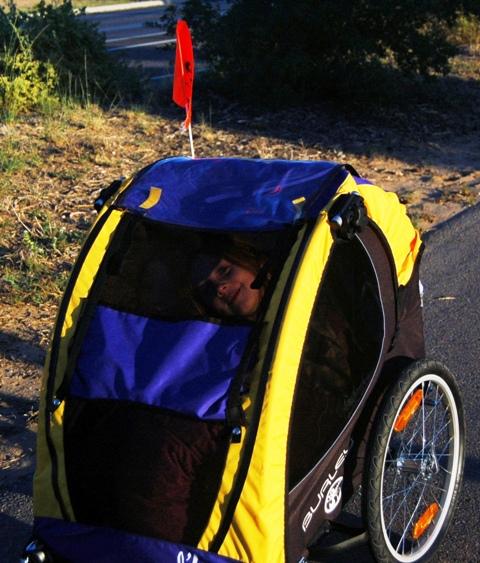 Chic & Chicklet in bike trailer