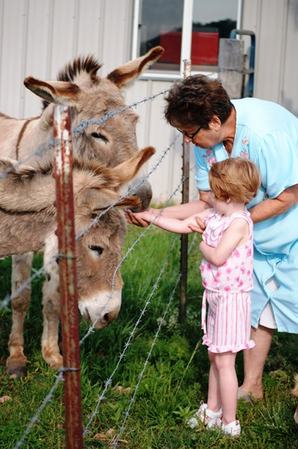 Chicklet and Grandma D feeding the donkeys