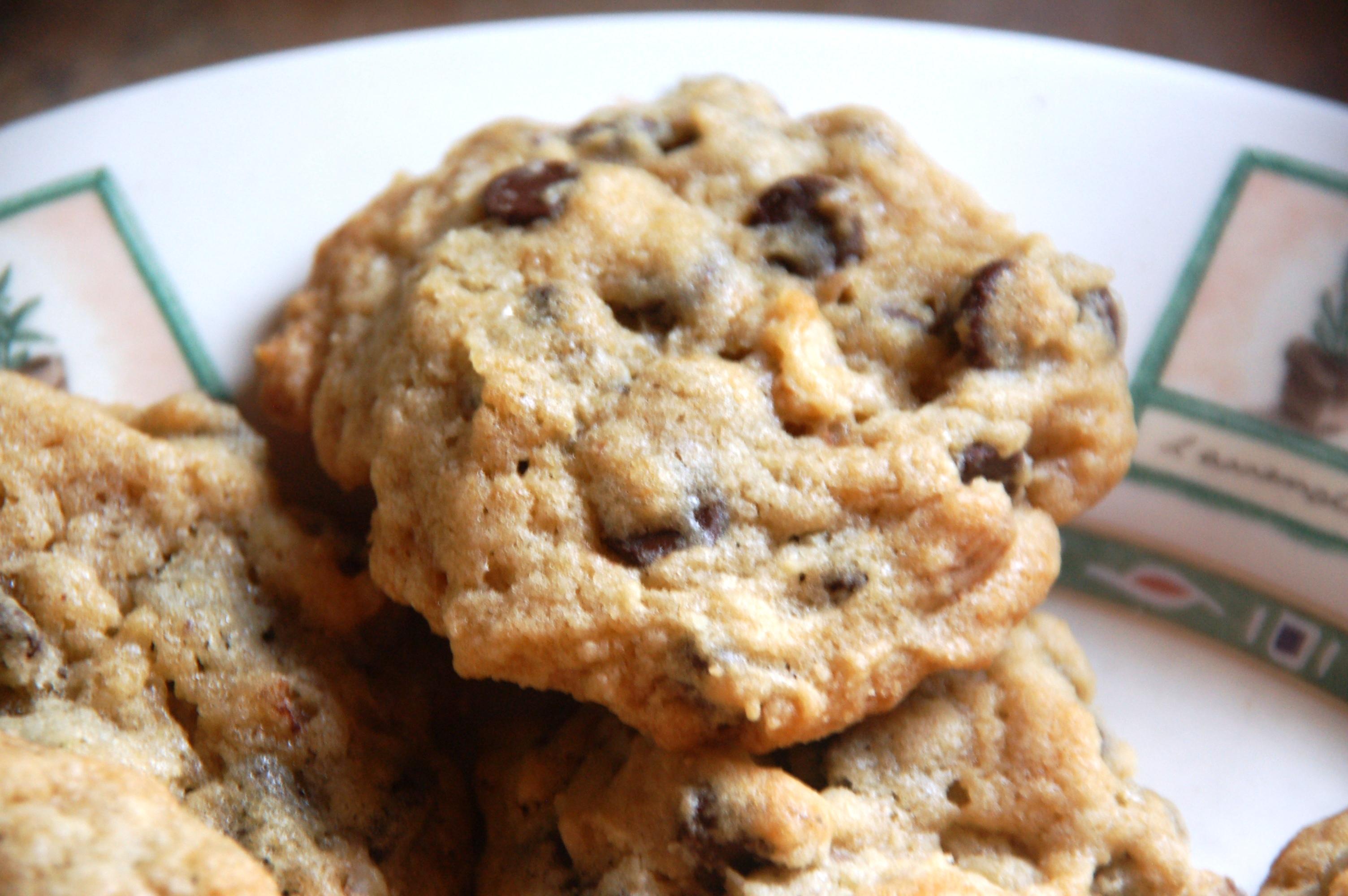 3.CookieClose-up.2009-07-14_18-14-07