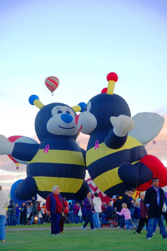 These bees are always together.  The weather conditions did not let them go up together that day, but the nice crew inflated them anyway so everyone could look at them.