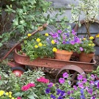 Containers & Repurposed
