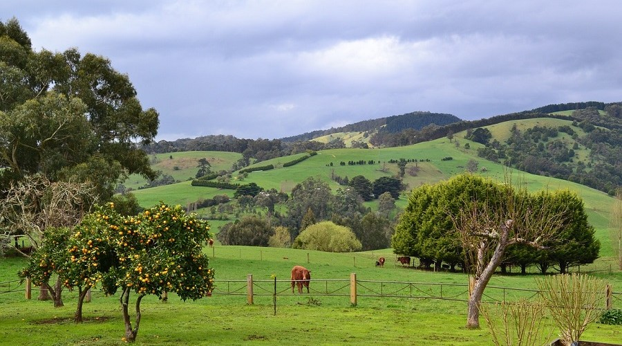 7 Day South Gippsland Tour