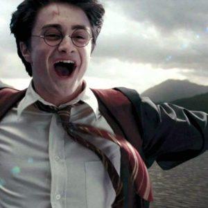 Všechno nejlepší, Harry!