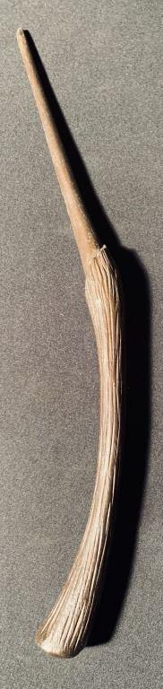 Bellatrixina hůlka