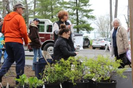 The Building a Better Boyertown Tree Committee sell trees and giveaway free seedlings during EarthFest at the Boyertown Community Park on Saturday, April 22, 2017. Michilea Patterson — Digital First Media