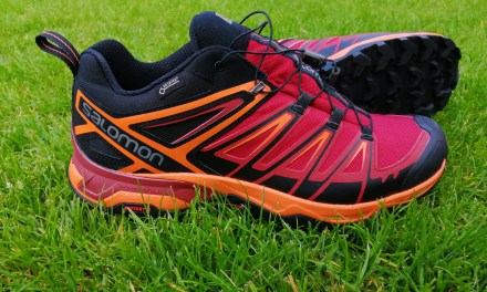 Salomon X Ultra 3 GTX  – An Awesome Shoe for Everyday Adventures