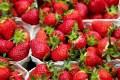 strawberries-1396330 640