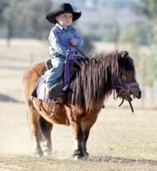 horsing 1