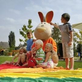sunny bunny2