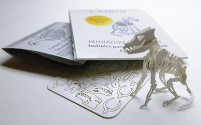 Canine miniature skeleton model with laser cut bones and instructions by Tinysaur.us