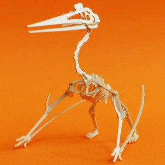 Assembled Quetzalcoatlus mini skeleton model by Tinysaur.us