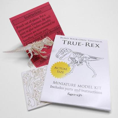 True Rex miniature skeleton model with laser-cut bones and instructions by Tinysaur.us