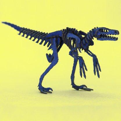 Completed Velociraptor skeleton model