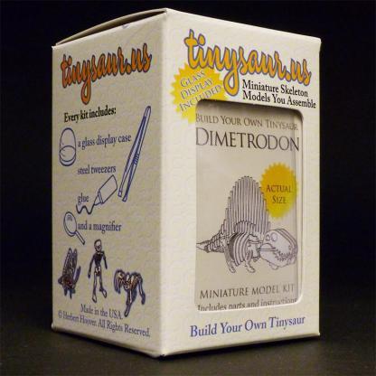 Dimetrodon all-in-one miniature skeleton model kit packaging