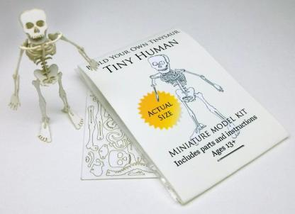 Tiny Human miniature skeleton model with laser-cut bones and instructions by Tinysaur.us
