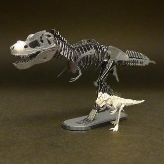 Assembled Metal Earth Tyrranosaurus Rex kit with Tinysaur True Rex miniature skeleton model for scale