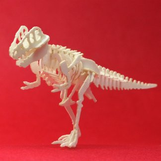 Assembled True Rex mini t-rex skeleton model by Tinysaur.us