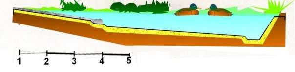 plan d'une mare à canards