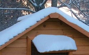 poulailler sous la neige en hiver