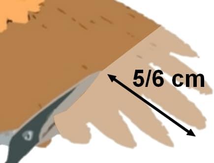 détail de la coupe d'une aile de poule