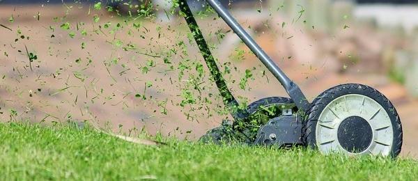 tondeuse sur une pelouse