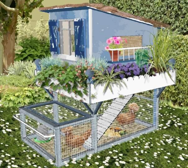 Petit poulailler bleu pour petit jardin en ville