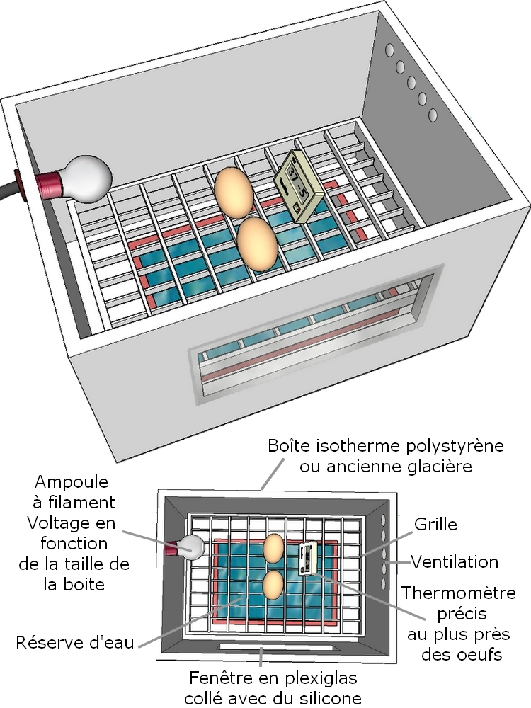 incubation artificielle des ufs de poules et volailles poulailler bio. Black Bedroom Furniture Sets. Home Design Ideas
