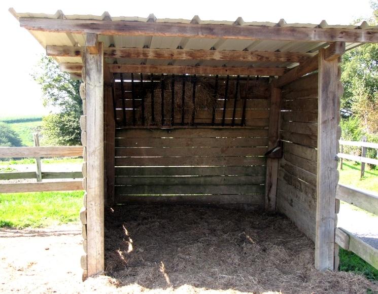 abri simple pour âne à installer dans le prè