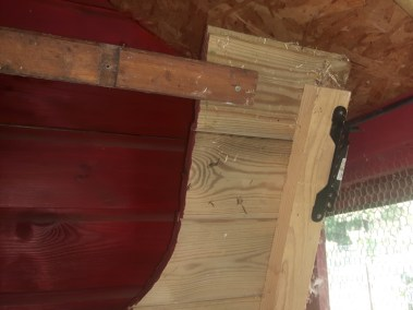 Marie-Ange - trappe de nettoyage du poulaillier auto construit en lambris