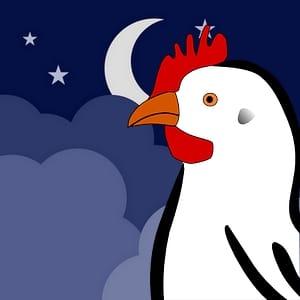 Les poules comme de nombreux autres oiseaux à une bonne vision nocturne. Cela lui permet d'être sensible aux cycles lunaires.