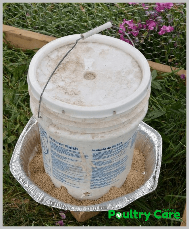 5-Gallon-Bucket-DIY-Chicken-Feeder-and-Waterer