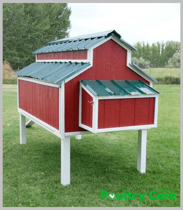 image relating to Free Printable Chicken Coop Plans titled 69 Do-it-yourself Rooster Coop Applications and Options That Are Simple in the direction of Produce