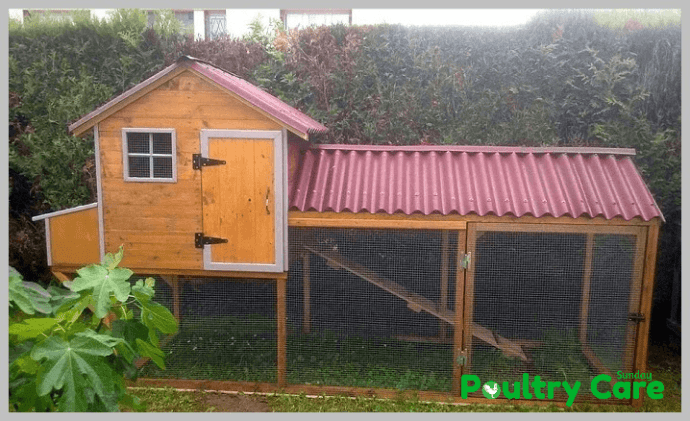 DIY-Chicken-Coop-From-Pallets