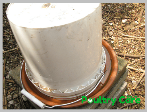 DIY-Chicken-Waterer-Homesteading