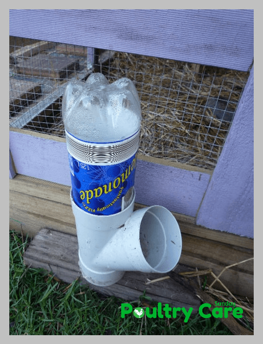 DIY-Soda-Bottle-and-PVC-Chicken-Waterer